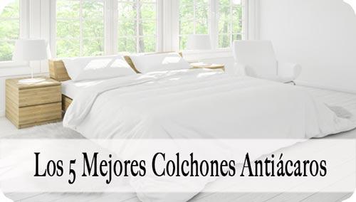 Colchon Antiácaros